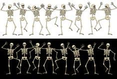 Roliga skelett Arkivfoton