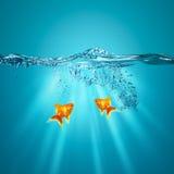 Roliga undervattens- bakgrunder Fotografering för Bildbyråer