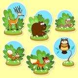 Roliga wood djur. vektor illustrationer