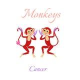 Roligt horoskop med gulliga apor Fisk för två tecknad film cancer stock illustrationer