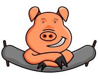 Roligt inhemskt svin Arkivfoton