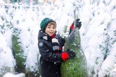 Roligt litet le träd för jul för ungepojke hållande Det lyckliga barnet i vintermode beklär det väljande och köpande xmas-trädet royaltyfri fotografi