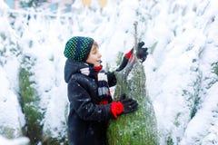 Roligt litet le träd för jul för ungepojke hållande Det lyckliga barnet i vintermode beklär det väljande och köpande xmas-trädet royaltyfri foto
