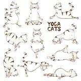 Roligt skissa katten som gör yogaposition stock illustrationer
