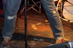 rolka rock Obraz Stock