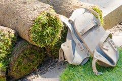 Rolki darniują trawy i drewnianej deski buty Zdjęcie Stock
