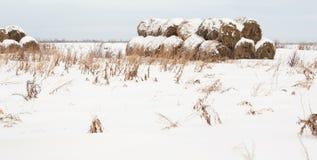 Rolki haystack Fotografia Stock