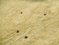 Rolki siano na polu Zdjęcie Stock