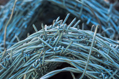 Roll of barb wire Stock Images