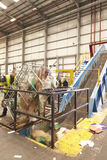 A roll cage of cardboard is emptied into recycling machinery Royalty Free Stock Photo
