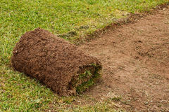 Roll of Cut Turf on garden Lawn. Freshly cut turf roll laid to create the perfect garden lawn Stock Image