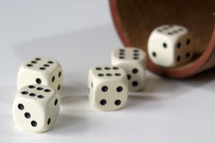 Roll the dice. Five dice, each showing the six. A dice box somewhat blurred in the background royalty free stock photos