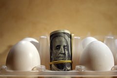 Roll of dollars with eggs Royalty Free Stock Photos