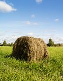 Roll of dry straw in field. Roll of dry straw in green field on background blue sky Royalty Free Stock Photography