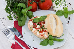 Roll with fresh Mozzarella Creme Stock Photography