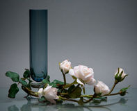 Roll glass vase and graceful flowers on gray Royalty Free Stock Photos