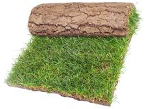 Roll of Grass Rug Stock Photo