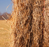 Roll of hay. A closeup of a hay roll Royalty Free Stock Photo