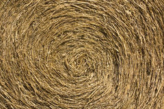 Roll Hay. Roll of Straw or Hay for Cow and Livestock in The Farm Royalty Free Stock Photography