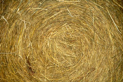 Roll of Hay. A roll of hay and/or straw Royalty Free Stock Photography