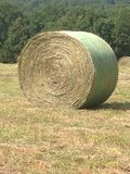 Roll of hay Stock Photography