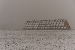 Roll hay stack. Covered in falling snow Stock Photos