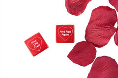 Roll the Love. Valentine dice mixed with rose petals Royalty Free Stock Photo