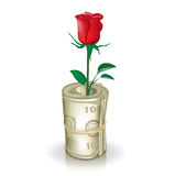 Roll of money with red rose Stock Photography