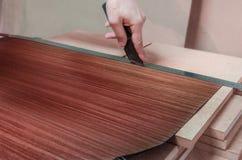 Roll of oak veneer. And furniture blanks for veneering Royalty Free Stock Photos