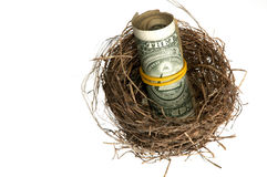 Roll Of Dollars In Nest Stock Photography