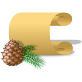 Roll of parchment paper and pine cone Royalty Free Stock Image