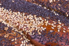 Roll with poppy seeds Royalty Free Stock Photography