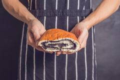 Roll with poppy seeds in the hands of a baker royalty free stock photo