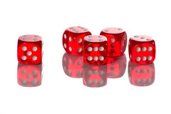 Roll red dice 23446 stock image