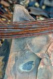 Roll of rusted iron wire on a rock royalty free stock photos