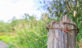 Roll of rusty barbed wire Stock Images