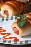 Roll with sausage on a plate with tomato sauce vertical Stock Image