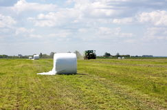 Roll silage stretch film. Roll spring harvesting of grass forage in the plastic packaging on the fieldsilage stretch film Royalty Free Stock Photography