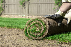 Roll of sod Royalty Free Stock Photos