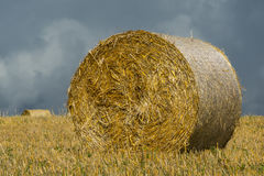 Roll of straw Stock Photos