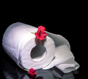 Roll of toilet paper Royalty Free Stock Images