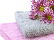 Roll of towel and pink chrysanthemums flowers Royalty Free Stock Image