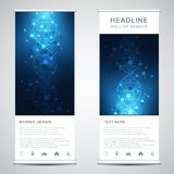 Roll up banner stands with DNA strand and molecular structure. Genetic engineering or laboratory research. Abstract. Geometric texture for medical, science and royalty free illustration