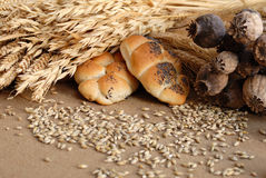 Roll and wheat. Bake goods and wheat Royalty Free Stock Image