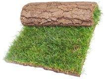 Rolle der Gras-Wolldecke Stockfoto