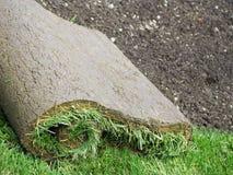 Rolle der Grasscholle stockbild
