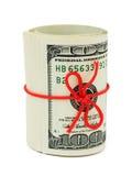 Rolle des Geldes und des Bogens Lizenzfreie Stockbilder
