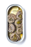 Rolled anchovies in can Stock Image
