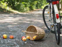 Rolled apples Stock Photography
