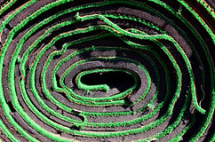 Rolled Artificial Turf Green Carpet Royalty Free Stock Photography